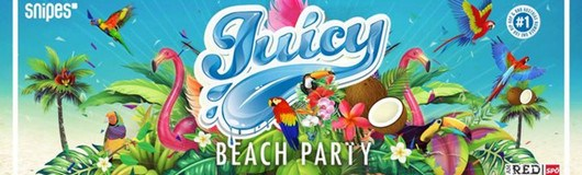 Juicy Beach Party am 23.07.2017 @ 21er Haus